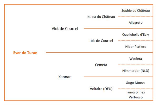 Origines Ever de Turan