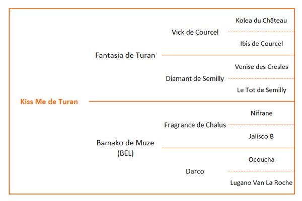 Origines Kiss Me de Turan